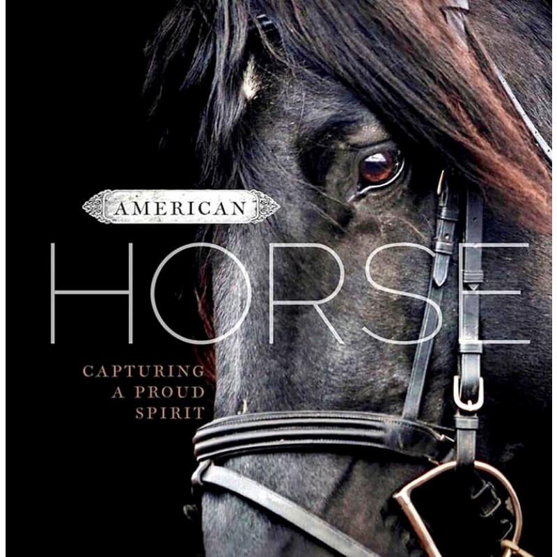 American Horse: Capturing a Proud Spirit