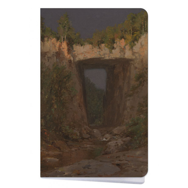 Natural Bridge by Jervis McEntee Mini Notebook