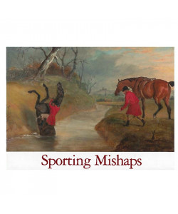 Sporting Mishaps Boxed Notecards